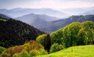 Экотуризм в Грузии